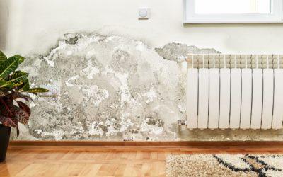 Mozgo Plumbing Home Inspection 400x250 - Blog